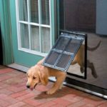 pet door flap for security doors and screens